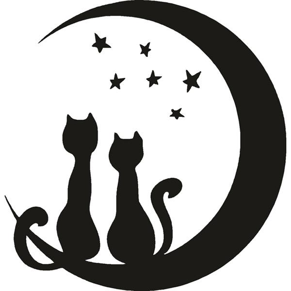 lune cats
