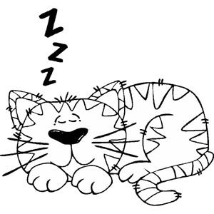 cat-spit.jpg